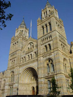 The Natural History Museum has been classed as one of the Seven Wonders of London by Time Out magazine.
